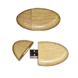 WD-027-usb-flash-drive-1