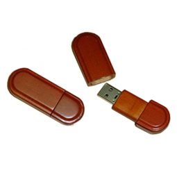 WD-074-usb-flash-drive-1